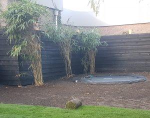 Schutting Bosma tuinen